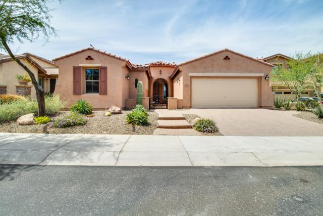 12552 W Morning Vista Drive, Peoria, AZ 85383 (MLS #5928210) :: The Carin Nguyen Team
