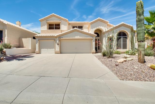 778 E Mountain Sage Drive, Phoenix, AZ 85048 (MLS #5928213) :: CC & Co. Real Estate Team
