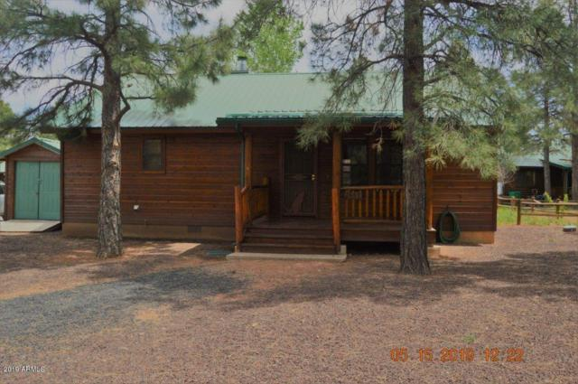 2688 Palomino Trail, Overgaard, AZ 85933 (MLS #5928216) :: The Pete Dijkstra Team