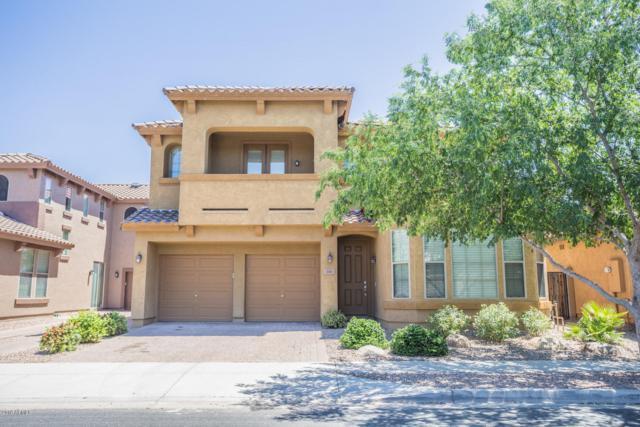 3101 S Joshua Tree Lane, Gilbert, AZ 85296 (MLS #5928230) :: CC & Co. Real Estate Team