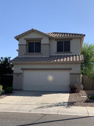 3535 W Steinbeck Court, Anthem, AZ 85086 (MLS #5928231) :: Yost Realty Group at RE/MAX Casa Grande