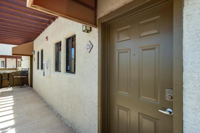 3434 E Baseline Road #230, Phoenix, AZ 85042 (MLS #5928235) :: CC & Co. Real Estate Team