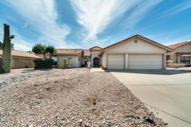 12642 S 40TH Street, Phoenix, AZ 85044 (MLS #5928238) :: CC & Co. Real Estate Team