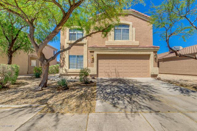 24784 N Good Pasture Lane, Florence, AZ 85132 (MLS #5928245) :: CC & Co. Real Estate Team