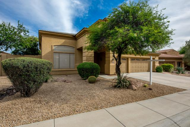 5011 E Desert Vista Trail, Cave Creek, AZ 85331 (MLS #5928246) :: The Pete Dijkstra Team