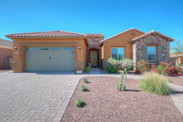 2609 W Desert Marigold Drive, Phoenix, AZ 85085 (MLS #5928256) :: The W Group