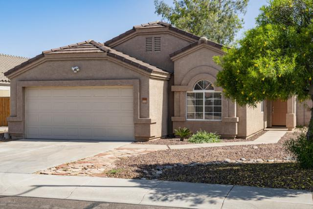 9163 W Harmony Lane, Peoria, AZ 85382 (MLS #5928258) :: Keller Williams Realty Phoenix