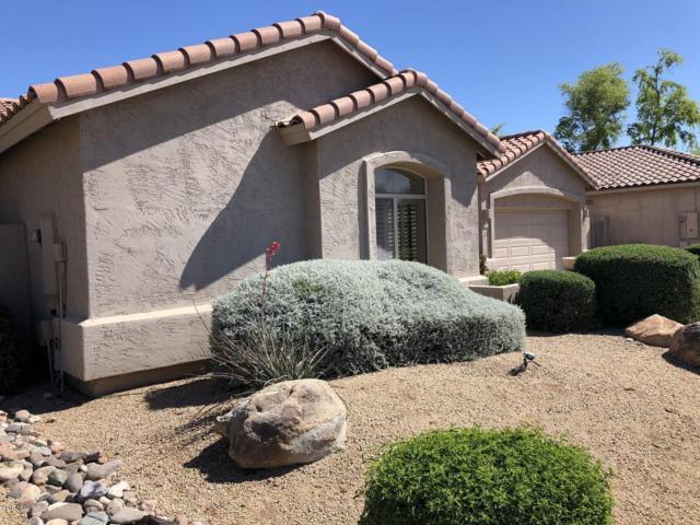 5124 E Juniper Avenue, Scottsdale, AZ 85254 (MLS #5928279) :: The W Group
