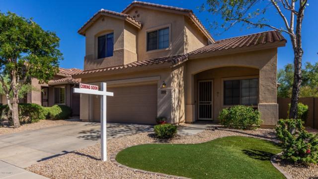 39511 N White Tail Lane, Anthem, AZ 85086 (MLS #5928284) :: CC & Co. Real Estate Team