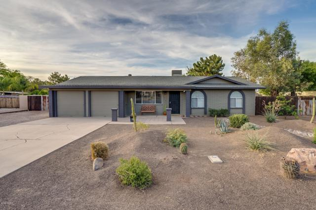 976 E Gunstock Road, Chandler, AZ 85286 (MLS #5928312) :: Realty Executives