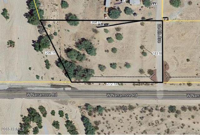 21334 W Narramore Road, Buckeye, AZ 85326 (MLS #5928329) :: Realty Executives