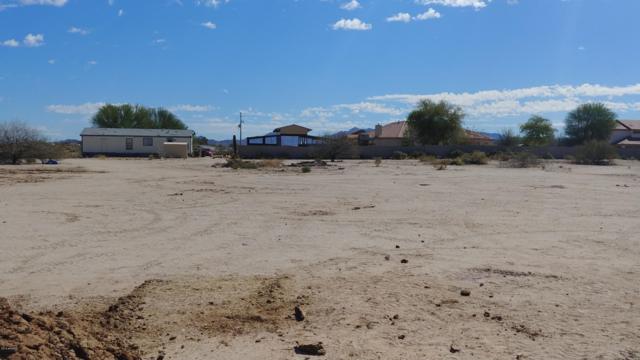123XX S 214th Avenue, Buckeye, AZ 85326 (MLS #5928332) :: Realty Executives