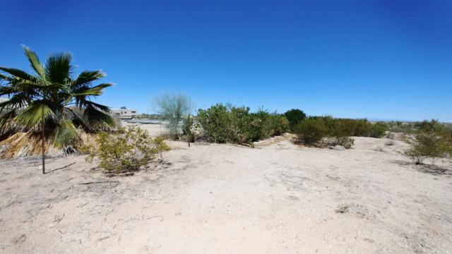 214XX S Narramore Road, Buckeye, AZ 85326 (MLS #5928335) :: Realty Executives