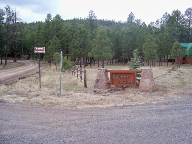 Lot 15 Greer Acres, Greer, AZ 85927 (MLS #5928354) :: Yost Realty Group at RE/MAX Casa Grande