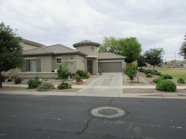 925 E Runaway Bay Place, Chandler, AZ 85249 (MLS #5928381) :: Brett Tanner Home Selling Team
