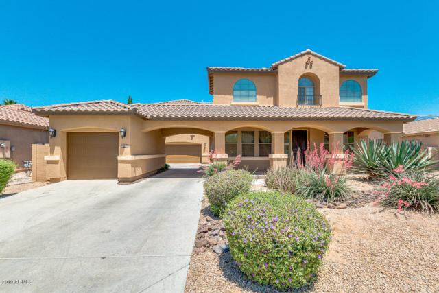 15330 W Roma Avenue, Goodyear, AZ 85395 (MLS #5928403) :: Realty Executives