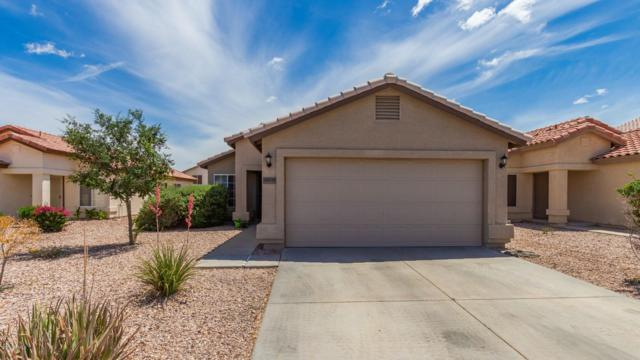 22839 W Cantilever Street, Buckeye, AZ 85326 (MLS #5928428) :: CC & Co. Real Estate Team