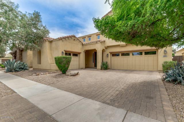 3541 E Shannon Street, Gilbert, AZ 85295 (MLS #5928431) :: Lux Home Group at  Keller Williams Realty Phoenix
