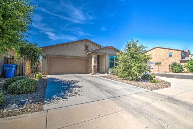 10341 W Hughes Drive, Tolleson, AZ 85353 (MLS #5928438) :: CC & Co. Real Estate Team