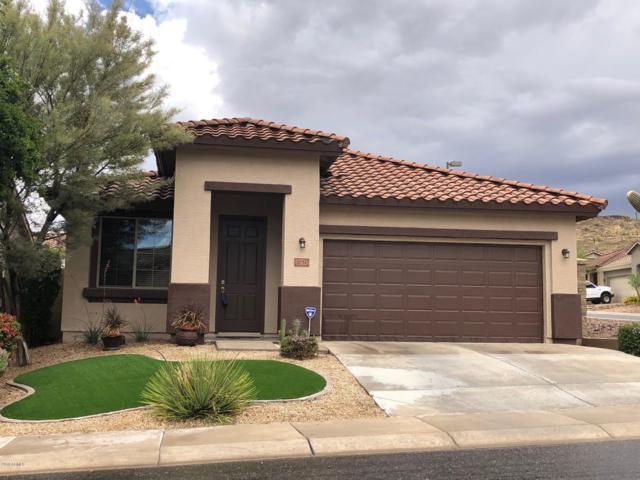 3750 W Ghost Flower Lane, Phoenix, AZ 85086 (MLS #5928492) :: CC & Co. Real Estate Team