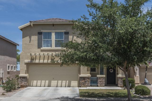 12178 W Belmont Drive, Avondale, AZ 85323 (MLS #5928502) :: The Daniel Montez Real Estate Group