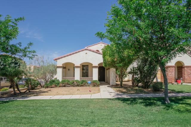 15490 W Dahlia Drive, Surprise, AZ 85379 (MLS #5928504) :: The Bill and Cindy Flowers Team