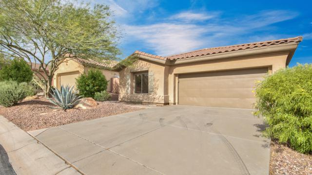 41309 N Belfair Way N, Anthem, AZ 85086 (MLS #5928508) :: Yost Realty Group at RE/MAX Casa Grande