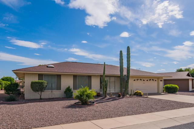 9805 W Amber Trail, Sun City, AZ 85351 (MLS #5928510) :: The Daniel Montez Real Estate Group