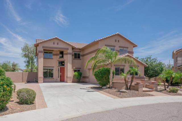 27017 N 54TH Avenue, Phoenix, AZ 85083 (MLS #5928516) :: The Laughton Team