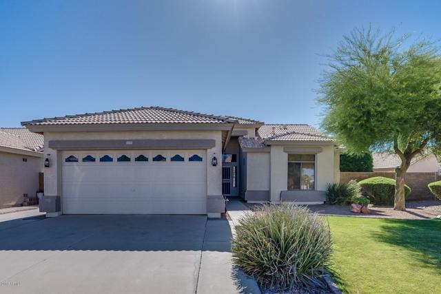 1079 S Butte Lane, Gilbert, AZ 85296 (MLS #5928550) :: CC & Co. Real Estate Team
