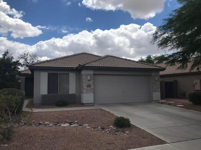 501 S 125th Avenue, Avondale, AZ 85323 (MLS #5928557) :: CC & Co. Real Estate Team
