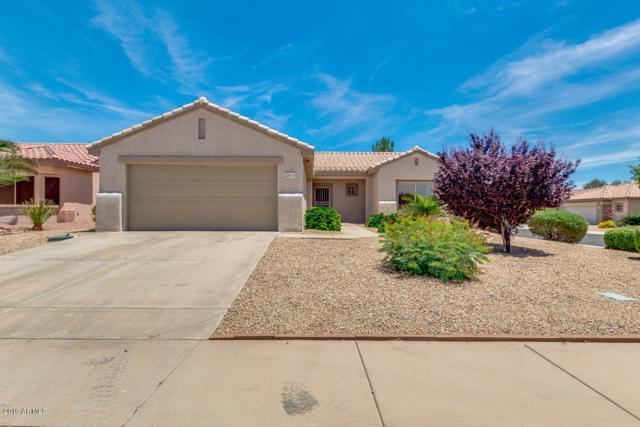 20151 N Saguaro Court, Surprise, AZ 85374 (MLS #5928579) :: CC & Co. Real Estate Team