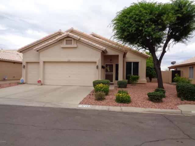 17733 N Lainie Court, Surprise, AZ 85378 (MLS #5928587) :: Homehelper Consultants