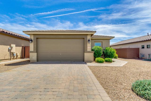 431 W Flame Tree Avenue, San Tan Valley, AZ 85140 (MLS #5928592) :: CC & Co. Real Estate Team