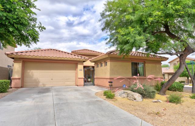 39626 N Graham Way, Anthem, AZ 85086 (MLS #5928593) :: Arizona 1 Real Estate Team