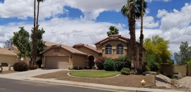 1020 E Hearne Way, Gilbert, AZ 85234 (MLS #5928594) :: CC & Co. Real Estate Team