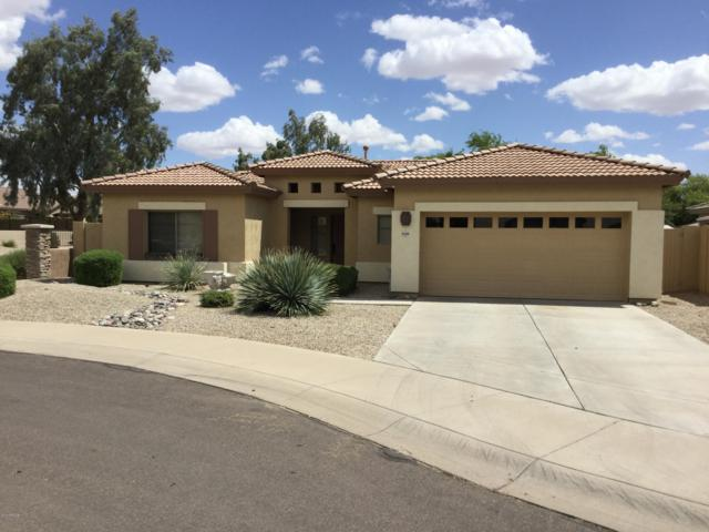 21289 E Stirrup Street, Queen Creek, AZ 85142 (MLS #5928604) :: CC & Co. Real Estate Team