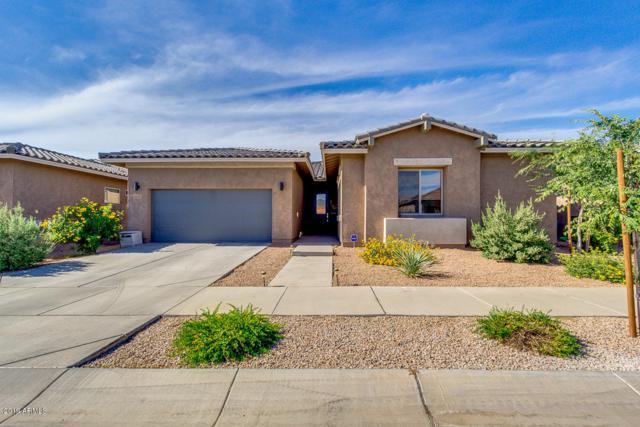 22712 E Tierra Grande, Queen Creek, AZ 85142 (MLS #5928606) :: Brett Tanner Home Selling Team