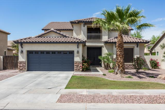 3538 E Tonto Drive, Gilbert, AZ 85298 (MLS #5928608) :: CC & Co. Real Estate Team
