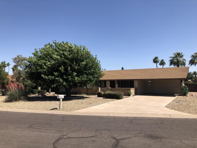 419 E Sagebrush Street, Litchfield Park, AZ 85340 (MLS #5928628) :: CC & Co. Real Estate Team