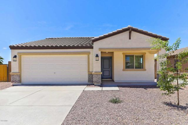 8728 S 254TH Drive, Buckeye, AZ 85326 (MLS #5928629) :: CC & Co. Real Estate Team