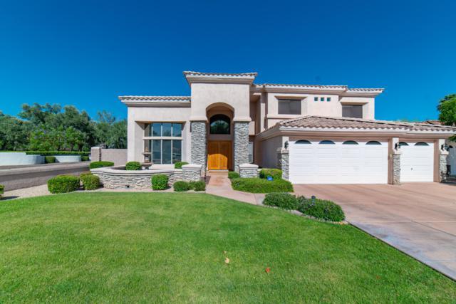 7051 N 1ST Avenue, Phoenix, AZ 85021 (MLS #5928631) :: CC & Co. Real Estate Team