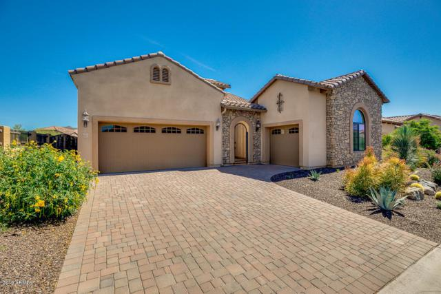 8412 E Jensen Street, Mesa, AZ 85207 (MLS #5928640) :: Homehelper Consultants