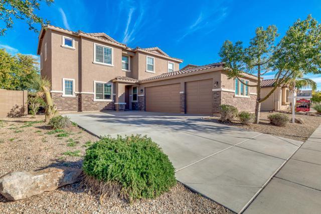 17398 W Buckhorn Trail, Surprise, AZ 85387 (MLS #5928661) :: Homehelper Consultants
