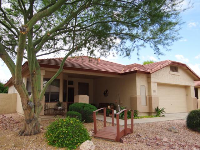 6503 W Tonto Drive, Glendale, AZ 85308 (MLS #5928677) :: CC & Co. Real Estate Team