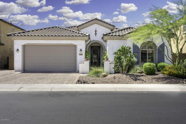 4590 S Danyell Drive, Chandler, AZ 85249 (MLS #5928683) :: Homehelper Consultants