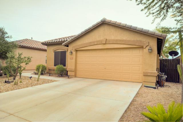 46149 W Guilder Avenue, Maricopa, AZ 85139 (MLS #5928690) :: The Daniel Montez Real Estate Group