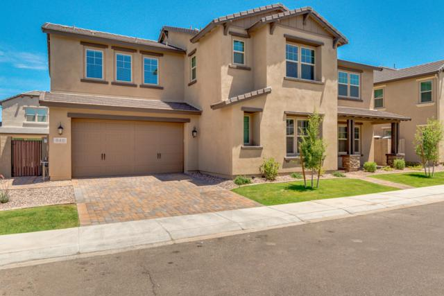 940 W Yosemite Drive, Chandler, AZ 85248 (MLS #5928691) :: Realty Executives