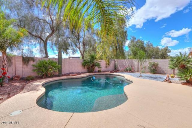 21036 N Alma Drive, Maricopa, AZ 85138 (MLS #5928692) :: The Daniel Montez Real Estate Group
