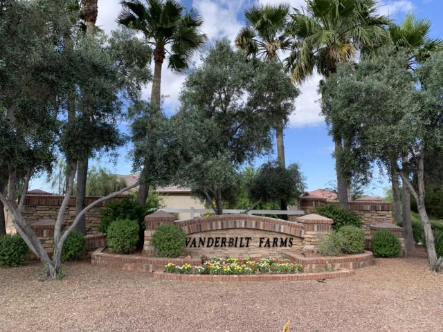 16464 W Mohave Street, Goodyear, AZ 85338 (MLS #5928704) :: The Daniel Montez Real Estate Group
